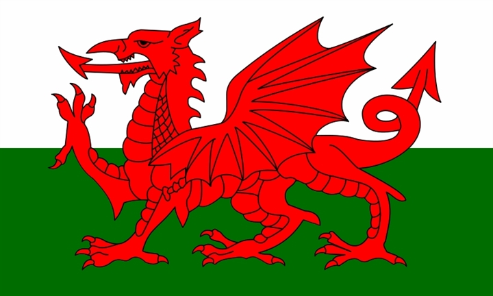 St. David's Day with WelshSoc