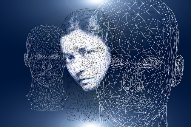 Faces with overlaid webs